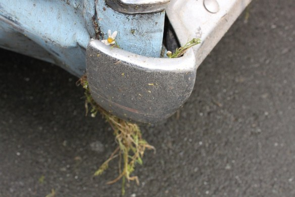 Post shunt flower power
